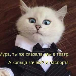 Sergei 3